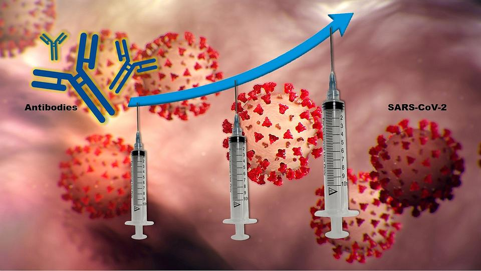 COVID-19 vaccine boosters may provide better protection for immunocompromised